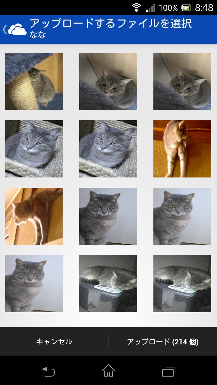 SkyDrive アプリケーション画面