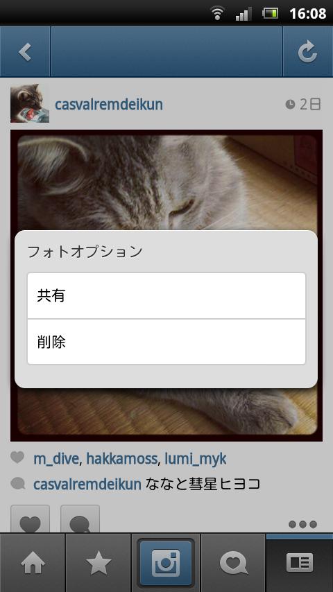 Instagram フォトオプションのスクリーンショット